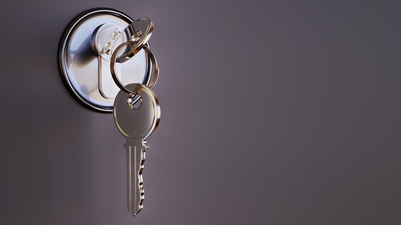 Quelle marque de serrure choisir pour vos portes?